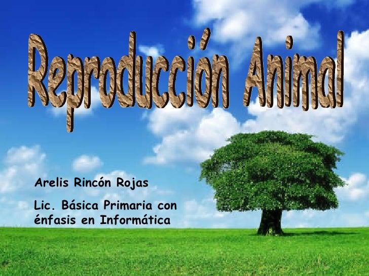 Arelis Rincón Rojas Lic. Básica Primaria con énfasis en Informática Reproducción Animal
