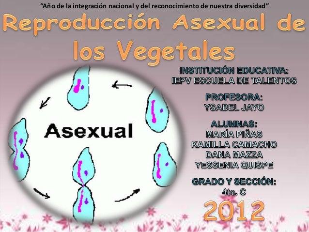 Formas de reproduccion asexual en vegetales