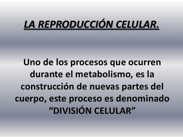 LA REPRODUCCIÓN CELULAR. Uno de los procesos que ocurren durante el metabolismo, es la construcción de nuevas partes del c...