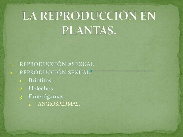 LA REPRODUCCIÓN EN PLANTAS.<br />REPRODUCCIÓN ASEXUAL<br />REPRODUCCIÓN SEXUAL..<br />Briofitos.<br />Helechos.<br />Faner...