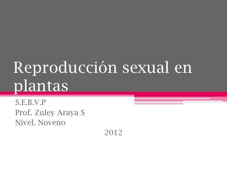 Reproducción sexual enplantasS.E.B.V.PProf. Zuley Araya SNivel. Noveno                      2012