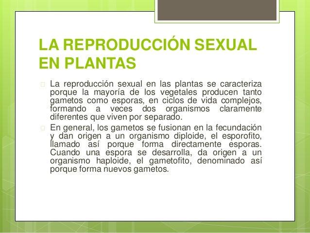Imagenes reproduccion sexual y asexual de las plantas