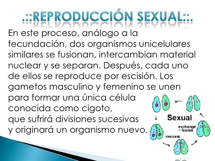 Reproduccion sexual y asexual definicion corta