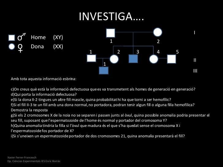 Reproduccio Slide 3