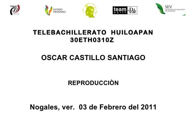 TELEBACHILLERATO  HUILOAPAN 30ETH0310Z  OSCAR CASTILLO SANTIAGO REPRODUCCIÒN Nogales, ver.  03 de Febrero del 2011