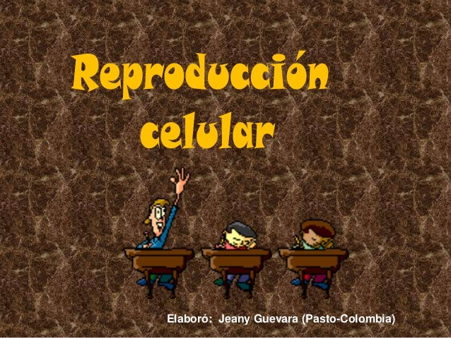 Elaboró: Jeany Guevara (Pasto-Colombia)