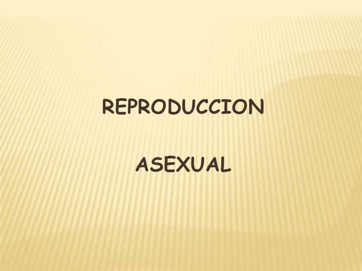 REPRODUCCION<br />ASEXUAL<br />
