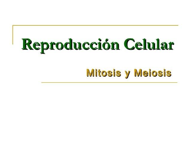 Reproducción CelularReproducción Celular Mitosis y MeiosisMitosis y Meiosis