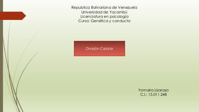Republica Bolivariana de Venezuela Universidad de Yacambú Licenciatura en psicología Curso: Genética y conducta División C...