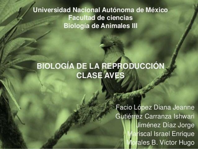 Universidad Nacional Autónoma de México Facultad de ciencias Biología de Animales III  BIOLOGÍA DE LA REPRODUCCIÓN CLASE A...