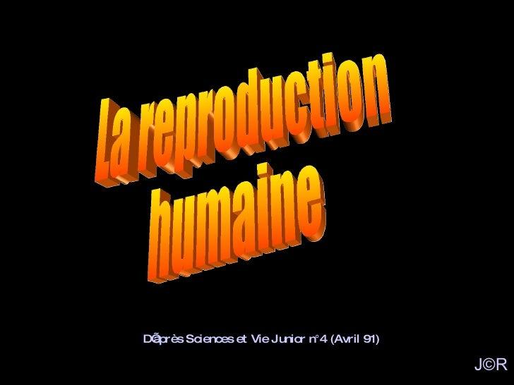 La reproduction humaine D'après Sciences et Vie Junior n°4 (Avril 91) J©R
