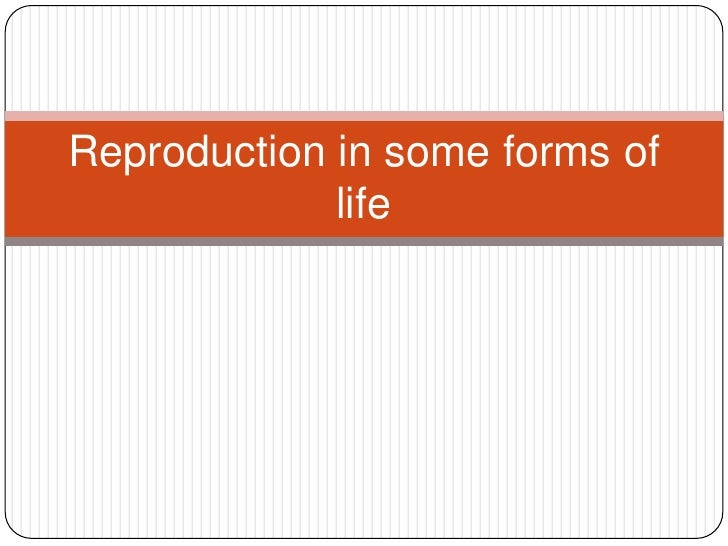 Reproduction in some forms of life<br />