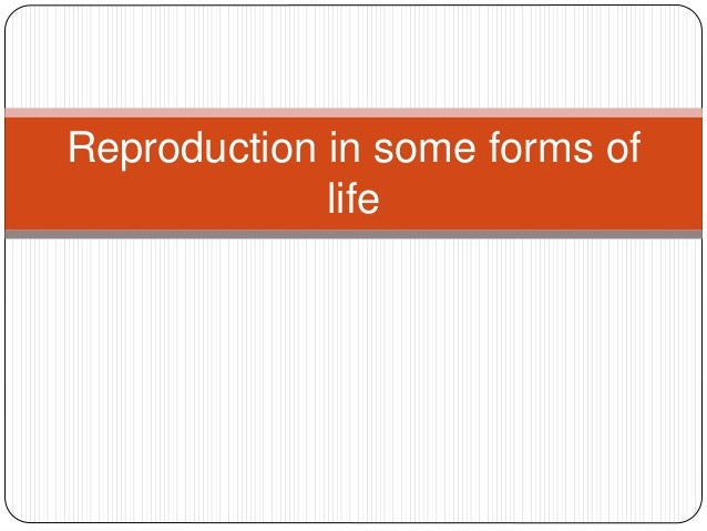 Reproduction in some forms of life