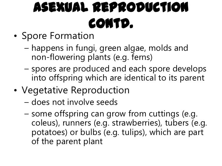 spore formation asexual reproduction Reproduction in plants and animals  sexual and asexual reproduction and these occur in both  (spore formation) iii) budding iv).