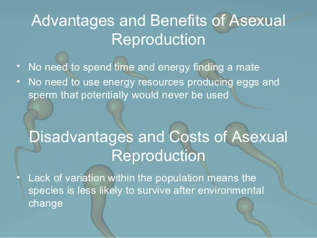 Costs benefits asexual reproduction