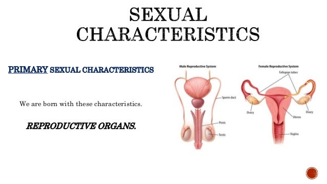 difference between primary and secondary sex characteristics of males in Roseville