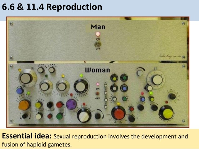 6.6 & 11.4 Reproduction Essential idea: Sexual reproduction involves the development and fusion of haploid gametes.