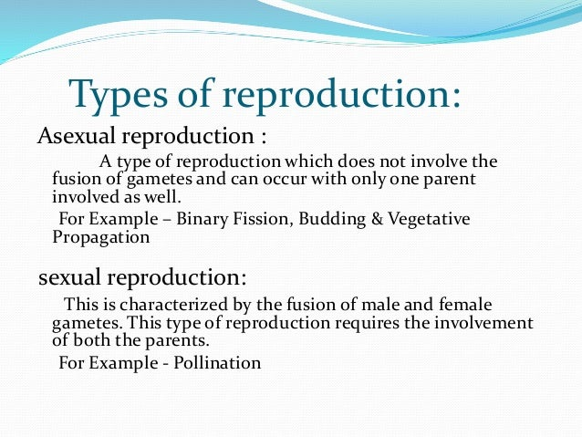 What is the mode of asexual reproduction in bacteria