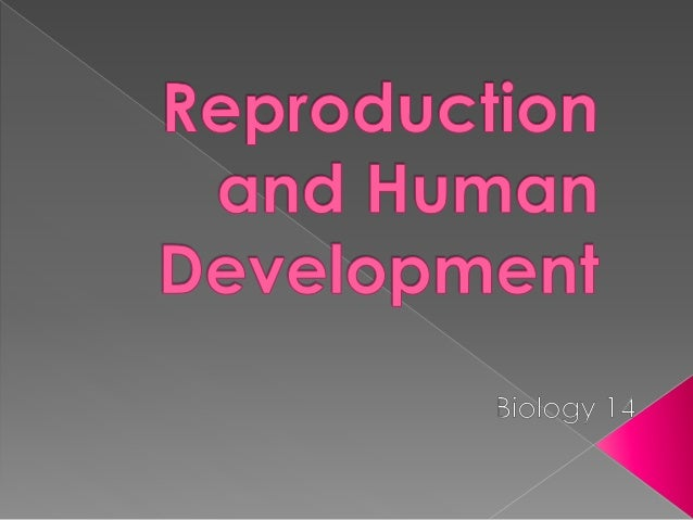 simplex definition Asexual reproduction