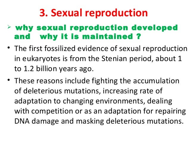 A sexual reproduction meaning