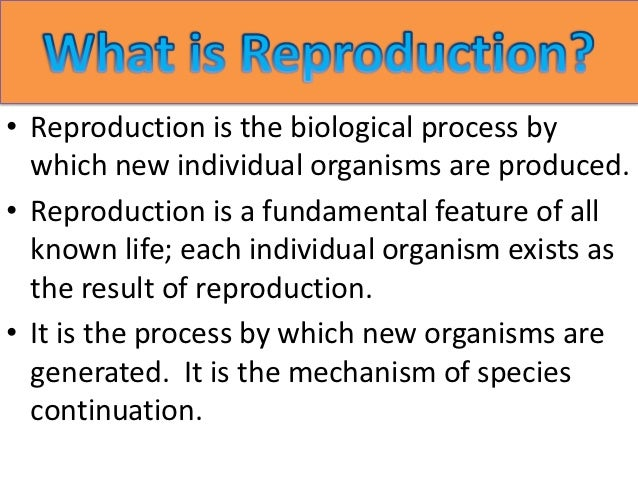 • Reproduction is the biological process by  which new individual organisms are produced.• Reproduction is a fundamental f...