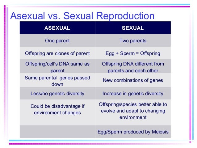 Genetic variation in asexual reproduction new combinations