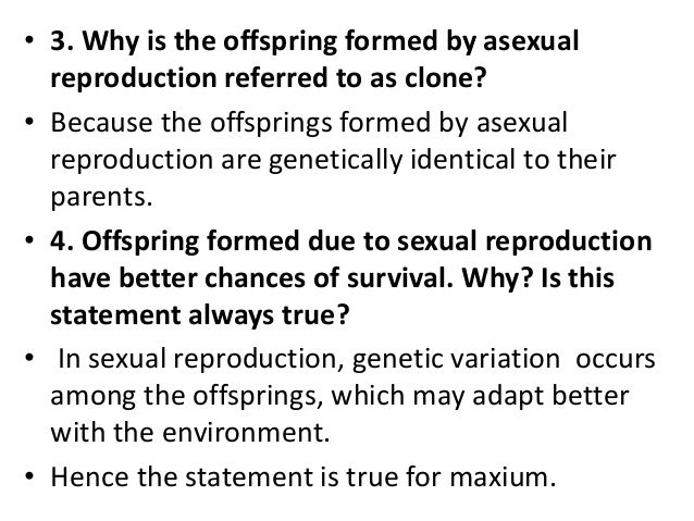 Why is the offspring of asexual reproduction a clone pic 19