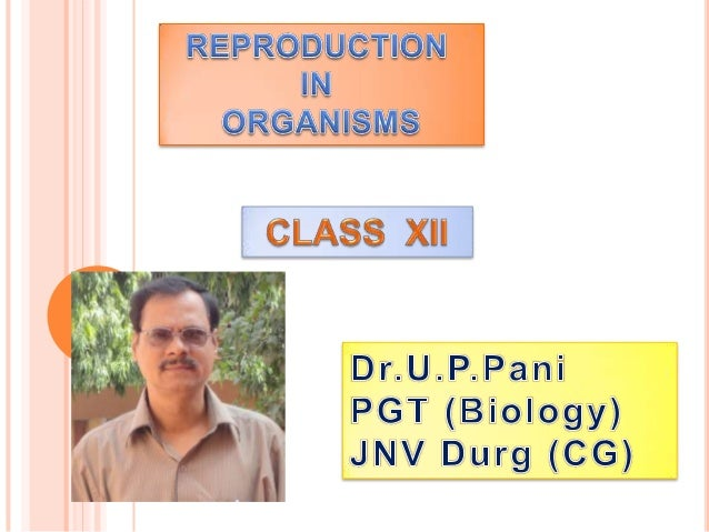   Reproduction is a fundamental feature of living organisms which involves the transmission of genetic material from  one...