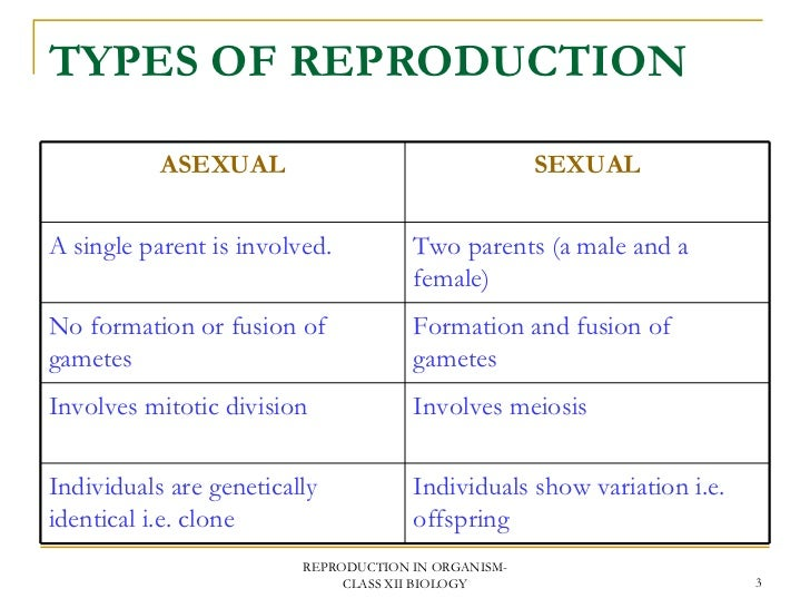 Two types of asexual reproduction photo 29