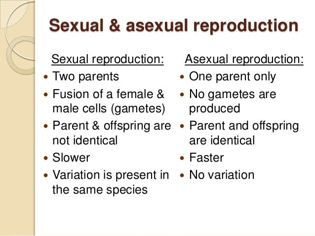Asexual and sexual reproduction examples