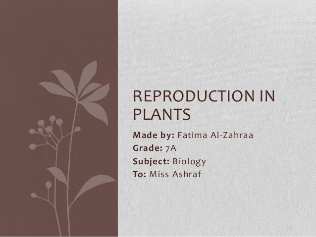 Made by: Fatima Al-Zahraa Grade: 7A Subject: Biology To: Miss Ashraf REPRODUCTION IN PLANTS