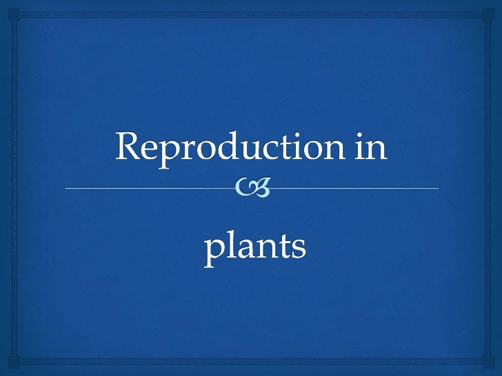 Reproductive parts of          flowering plants                          Flowers usually have male and female parts. Th...