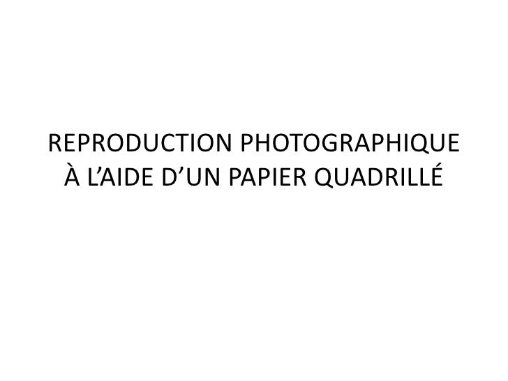 REPRODUCTION PHOTOGRAPHIQUE À L'AIDE D'UN PAPIER QUADRILLÉ<br />