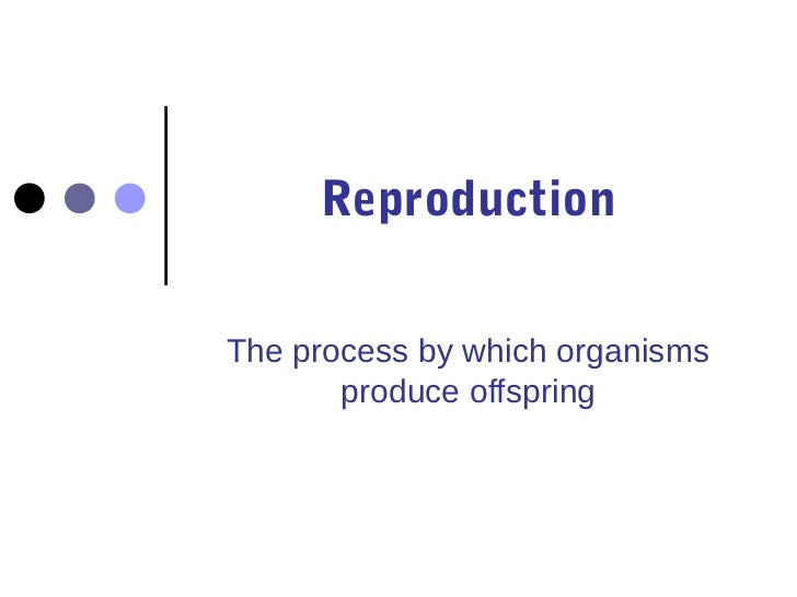 ReproductionThe process by which organisms       produce offspring