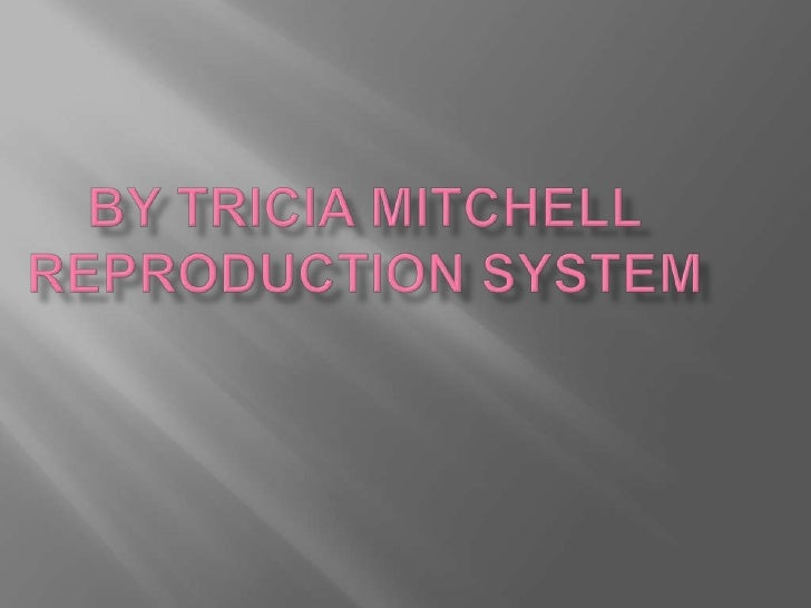By Tricia MitchellREPRODUCTION SYSTEM<br />