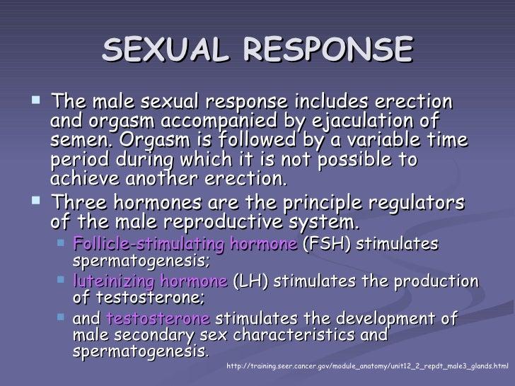 hormones that stimulate secondary sex characteristics in males in Miami