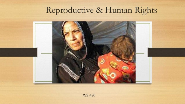 Reproductive & Human Rights  WS-420