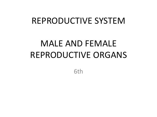 REPRODUCTIVE SYSTEM MALE AND FEMALE REPRODUCTIVE ORGANS 6th