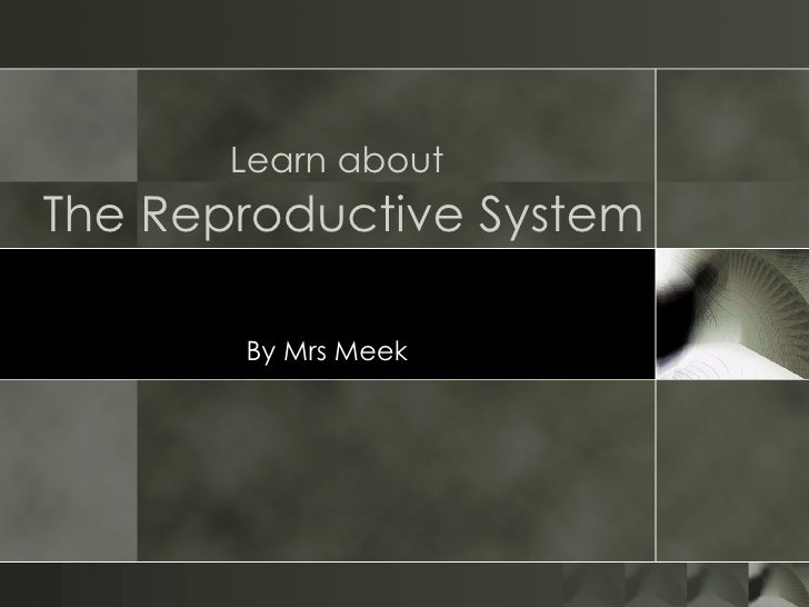 Learn about   The Reproductive System By Mrs Meek