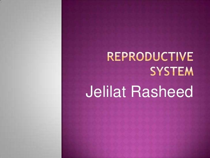 Reproductive system<br />Jelilat Rasheed<br />