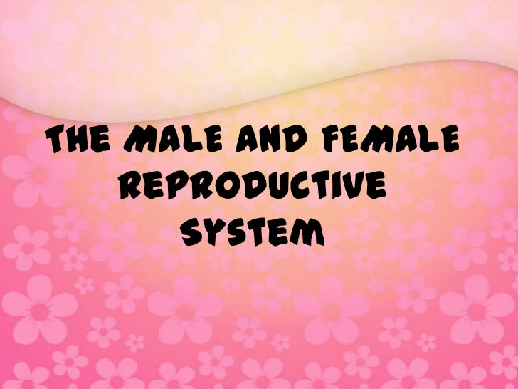 The MALE and FEMALE    Reproductive       System