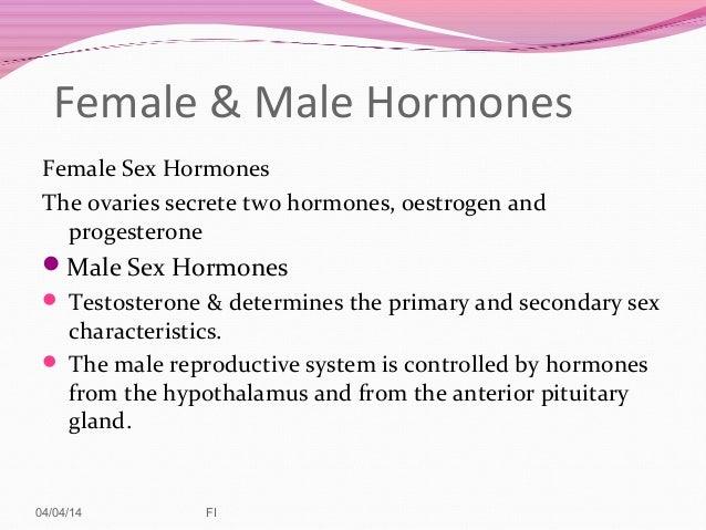 Primary sex hormone for females