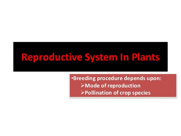 Reproductive System In Plants •Breeding procedure depends upon: Mode of reproduction Pollination of crop species