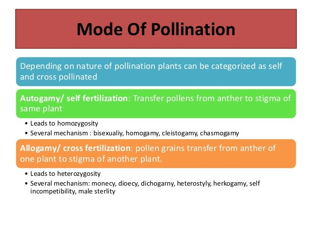 Often Allogamous Species •Cross pollination exceeds 5% to 30% •Sorghum, cotton, triticale, rai, pigeonpea and tobacco, jow...