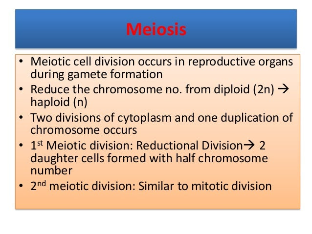 Meiosis • Meiotic cell division occurs in reproductive organs during gamete formation • Reduce the chromosome no. from dip...