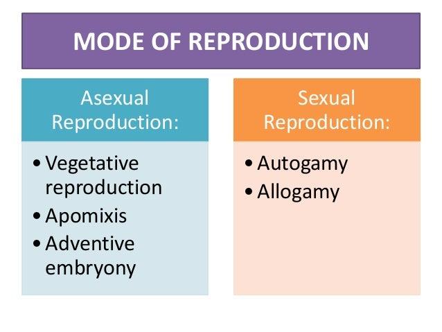 Asexual Reproduction Vegetative reproduction Vegetative parts: rhizomes, tuber, corn, bulbs Cutting and grafting: Stem, ro...