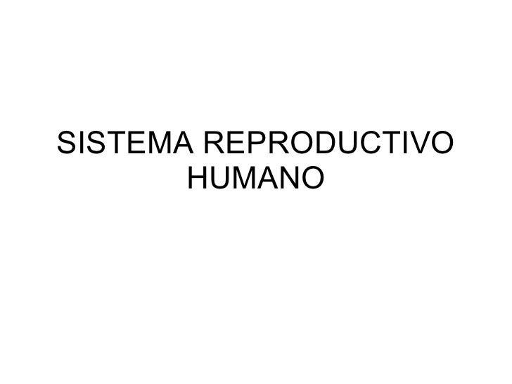 SISTEMA REPRODUCTIVO HUMANO