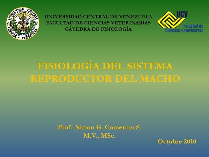 UNIVERSIDAD CENTRAL DE VENEZUELA<br />FACULTAD DE CIENCIAS VETERINARIAS<br />CÁTEDRA DE FISIOLOGÍA<br />FISIOLOGÍA DEL SIS...