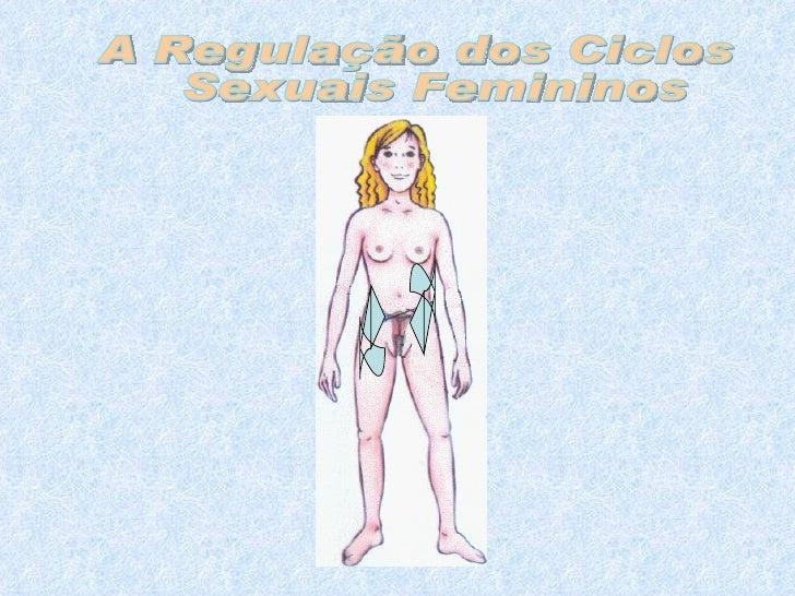 A Regulação dos Ciclos Sexuais Femininos