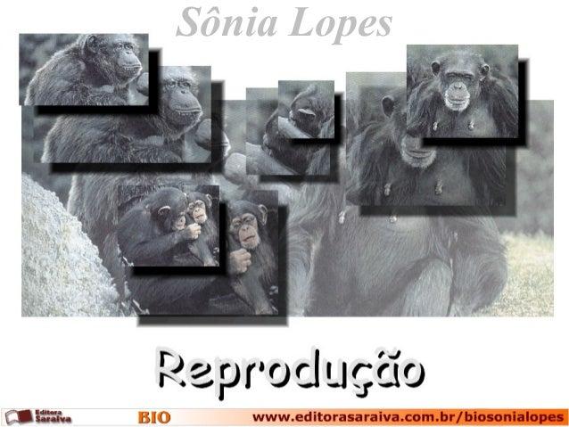 Sônia Lopes